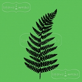rubber stamp small fern